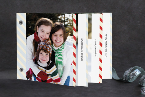twine and marble Holiday Minibook™ Cards