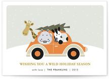 Wild Holidays