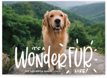 It's a Wonder-FUR Life by Sandra Picco Design
