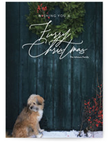 Furry Christmas by Jessica C. Nugent