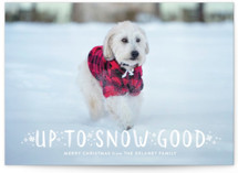 Snow Good Holiday Petite Cards
