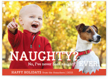 Naughty or Nice by bright designlab