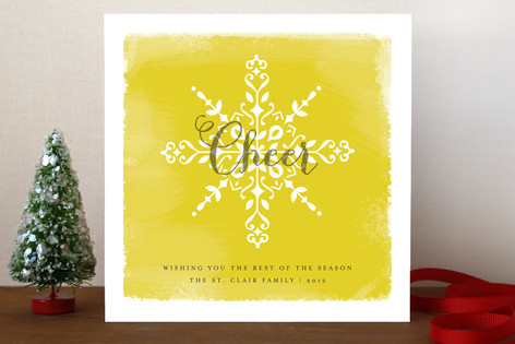 Snow & Sunshine Holiday Cards