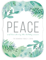 Painted Peace
