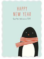 Cozy penguin