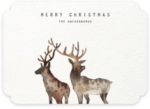 Merry Christmas, My Deers