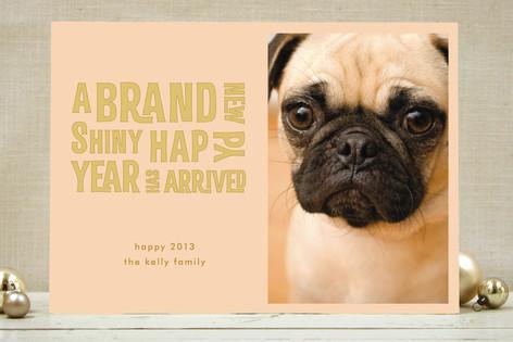 Brand New Shiny New Year Photo Cards