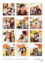 A Year in My Life New Year's Photo Cards