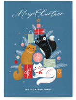 Christmas Kitties by Kristen Smith