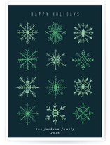 Snowflake Study