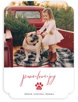 Paws, Love, Joy