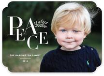 Peace Typography