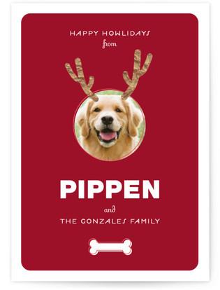 Reindog Holiday Photo Cards