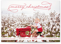 Gallery Classic Holiday Photo Cards