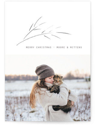 Crisp Air Holiday Photo Cards