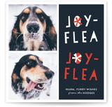 Joy-Flea