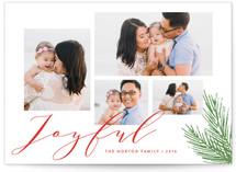 Joyful Holiday Wishes