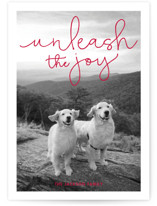 Unleash the Joy Holiday Photo Cards