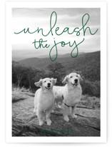Unleash the Joy