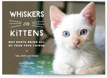 Whiskers on Kittens Holiday Photo Cards