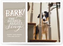 Bark!