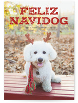 Feliz Navidog by Paper and Parcel