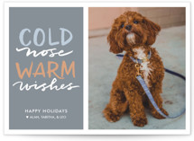 Cold Nose, Warm Wishes Holiday Photo Cards