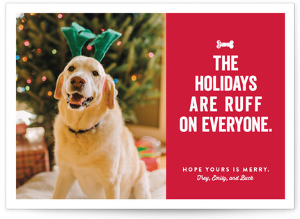 Ruff Holiday Photo Cards