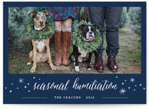 Seasonal Humiliation Holiday Photo Cards