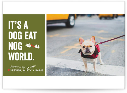 Dog Eat Nog Holiday Photo Cards