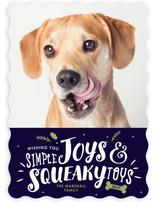 Simple Joys, Squeaky Toys