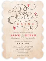 Love Grows