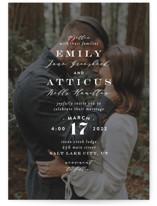 Picture Perfect Wedding Invitations