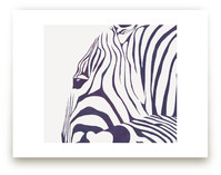 Hello Zebra!  by Gaucho Works