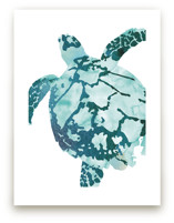 Tropical Sea Turtle by Shirley Browning