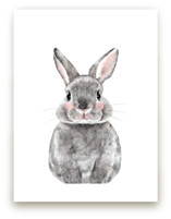 Baby Animal Rabbit Wall Art Prints