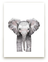 Baby Animal Elephant Wall Art Prints