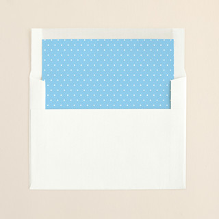 Chandelier Slip-In Envelope Liners