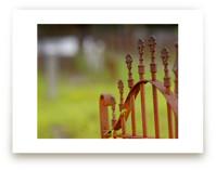 Rusty Iron Fence by Mary Ann Glynn-Tusa