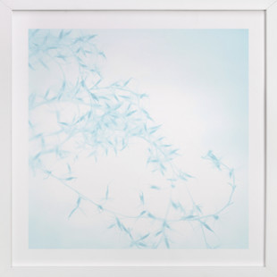 Winter Grass I  Art Print