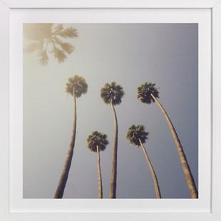 Sunny Palm Trees  Art Print