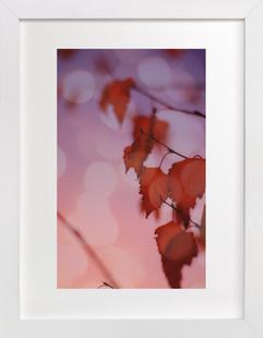 Warm Ombre  Art Print