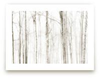 sideways by Robin Ott