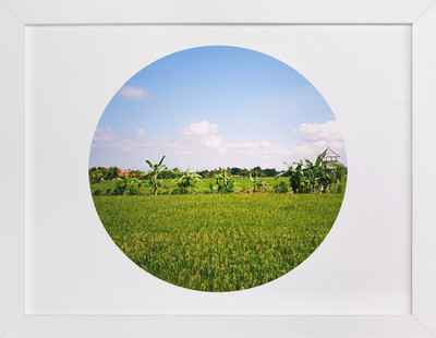 A World of Rice  Art Print