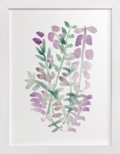 Watercolor Lavender  Art Print