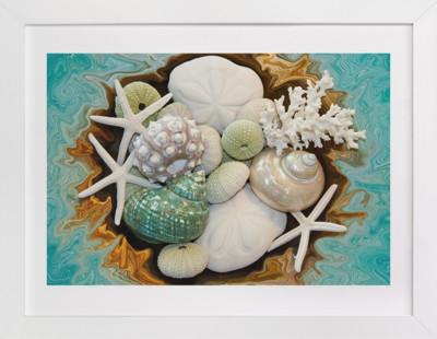 Sea Shell Swirls  Art Print