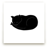 Morning Cat Nap by Gaucho Works