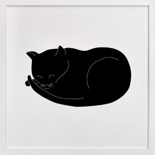 Morning Cat Nap  Art Print
