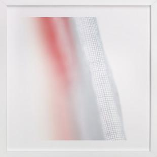 Fibers in Red  Art Print