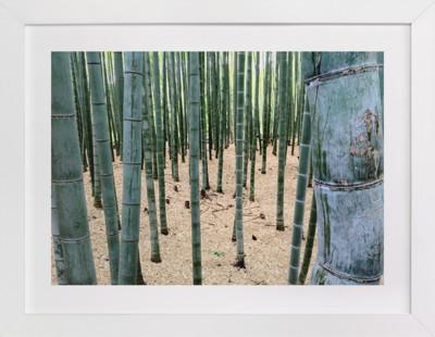 Bamboo Garden  Art Print